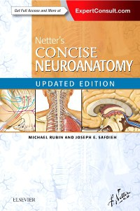 Netter's Concise Neuroanatomy, Updated Edition